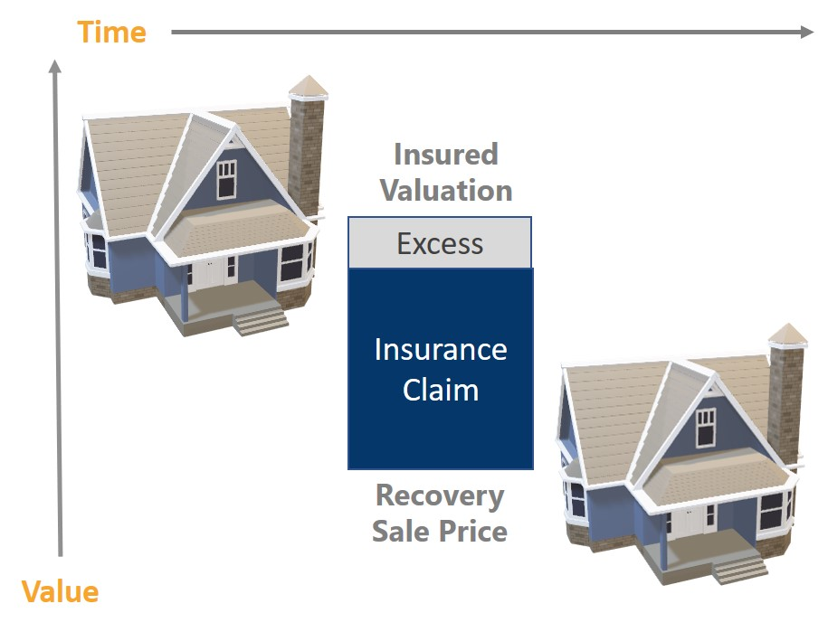 Verify IVM Insurance Example June 2020